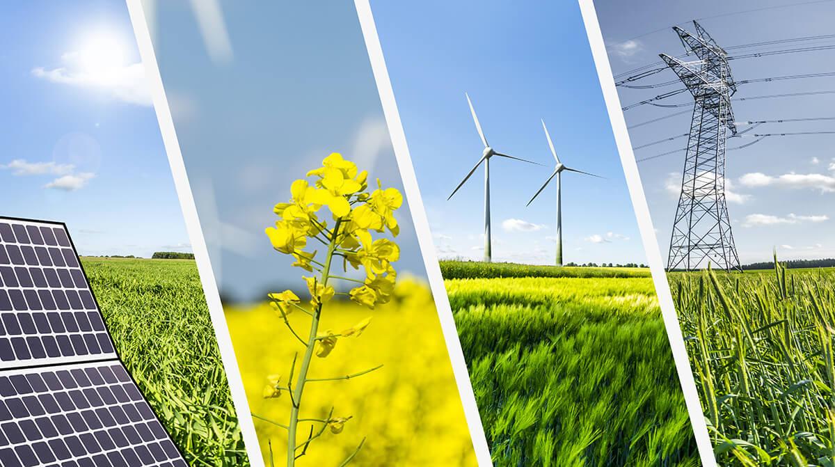 Unusual Sources Of Renewable Energy