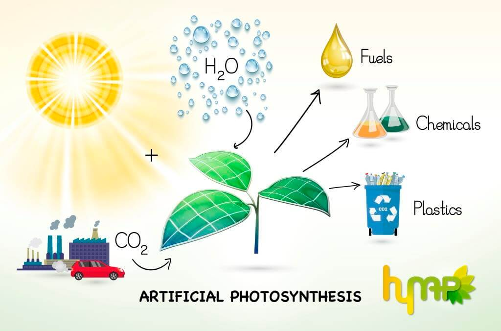 Why Artificial Photosynthesis Can Be A Renewable Energy Source
